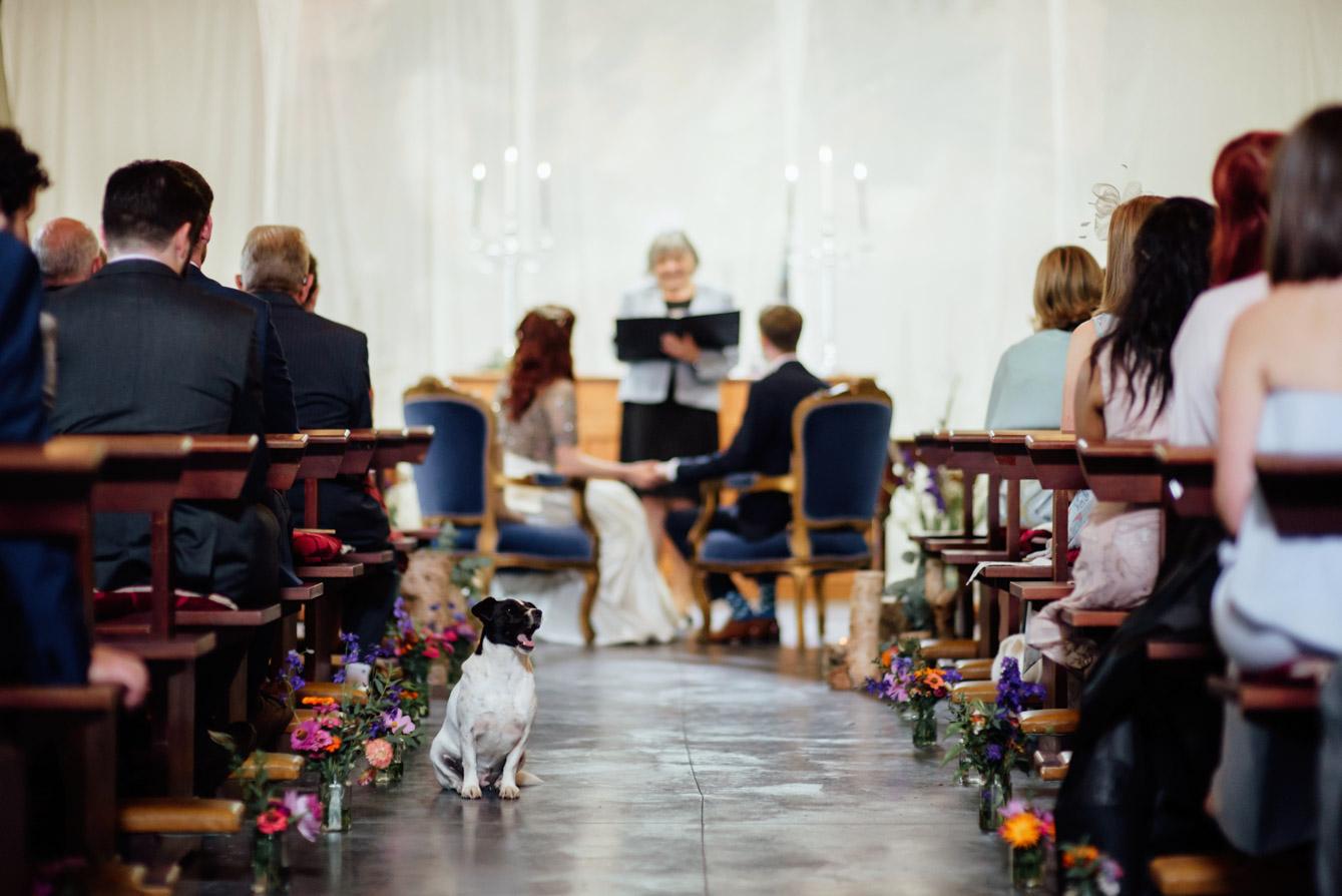 Mount Druid Wedding089