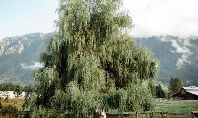 Angela & Paulin // Adventure Ranch // Pemberton, British Columbia